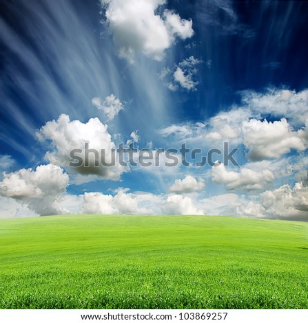 blue cloudy sky with green grass in the meadow in summer