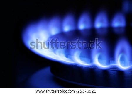 Blue gas flame on hob close up in the dark