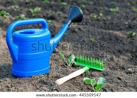 Blue plastic watering can and small rake on the background of the garden and the beds. summer in the garden outdoors. Bright equipment care crop