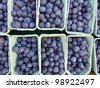 Blueberries in boxes at the greengrocer on the market place - stock photo