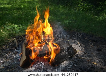Bonfire. Campfire in nature. Burning Wood with smoke. Close up of woods burning in fire place