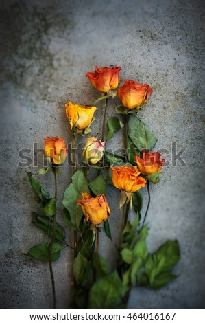 Bouquet of dried orange roses on grunge background