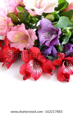 bouquet of flowers orchid family (Alstroemeria) beautiful and colorful