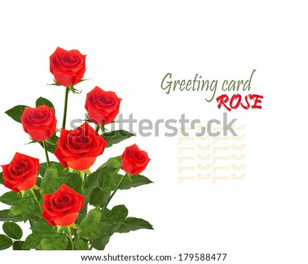 Bouquet of red roses with green leaves isolated on white background