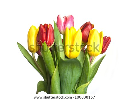 Bouquet of red, yellow and pink tulips isolated on white background closeup