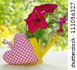 Bouquet of summer flowers is in a yellow watering-can and heart - stock photo
