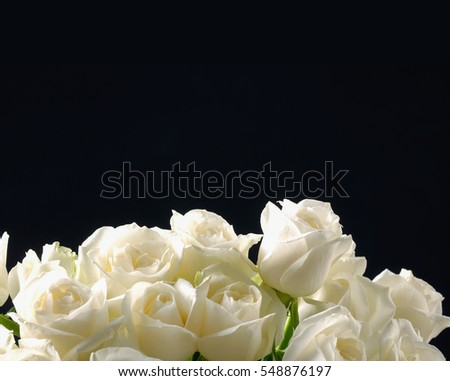 bouquet Roses on black background