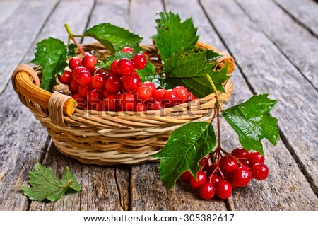 Branches fresh with viburnum berries and leaves in wicker basket on wooden background