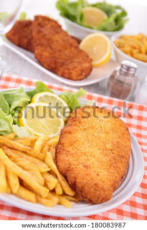 breaded meat and fries
