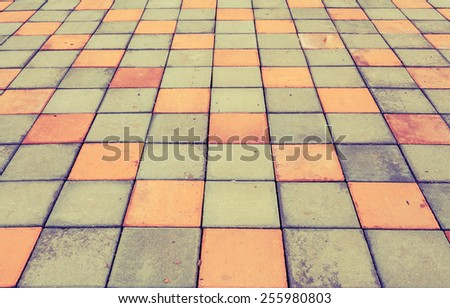 Brick pathway colorful in the park