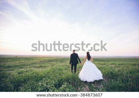 Bride and groom walking and holding hands on a meadow. Wide angle sunset photo.