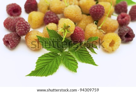 Bright raspberry with leaves on a white background