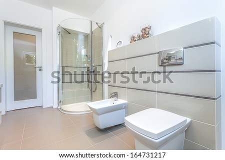 Bright space - a modern toilet with a shower and a bidet