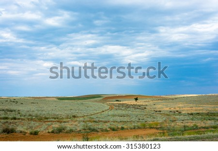 Bright summer Prairie landscape with a beautiful cloudy sky.