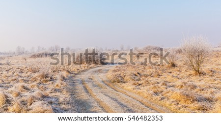 Bright winter scenery, with frozen vegetation and frost covered country road, on a cold and crisp, sunny, day