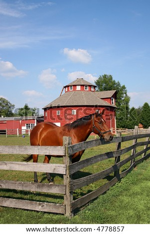 brown horse looking over a fence in the summertime with a red round barn in the background