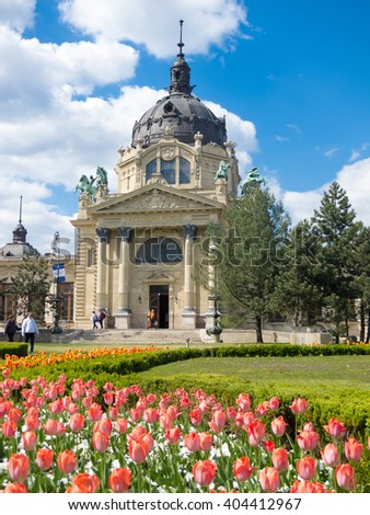Budapest, Hungary, April 19, 2015: The Szechenyi  Baths with tulips in the front in Budapest, Hungary.  The Szechenyi Medicinal Bath is the largest medicinal bath in Europe.