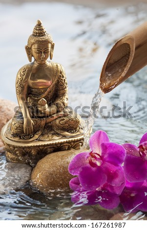 Buddha next to beauty
