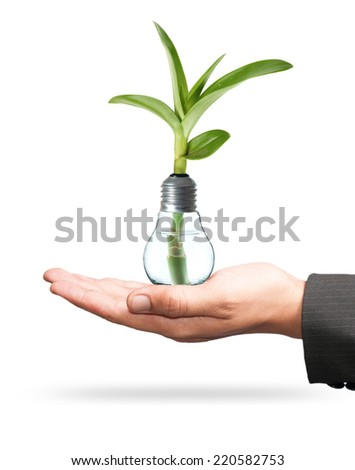 Bulb light with tree inside and hand on White background