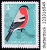 BULGARIA - CIRCA 1965: A stamp printed in Bulgaria shows a red and white bird on a branch of a tree, circa 1965. - stock photo