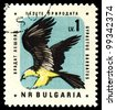 BULGARIA - CIRCA 1961: A stamp printed in Bulgaria  shows  eagle Lammergeier, circa 1961 - stock photo