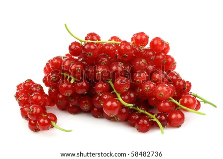 bunch of red currant on a white background