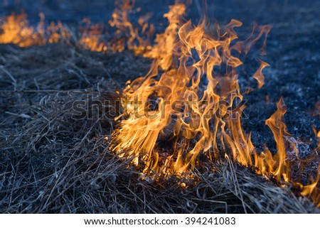 Burning dry grass on field