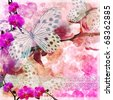 Butterflies and orchids flowers  pink background  with lace ( 1 of set) - stock vector