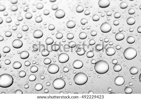 bw photo water drops of on treat water-repellent surface in macro lens shot small-DOF for screen wallpapers