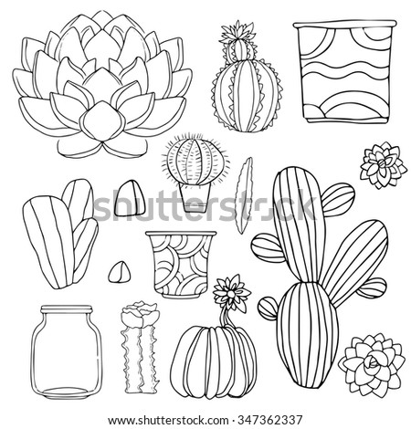 house plants drawing. cacti hand drawn sketch set succulents houseplants flowerpots stones isolated on white house plants drawing