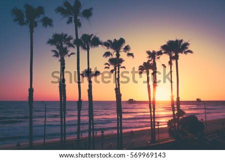 California Beach Sunset Stock Photo 569969143