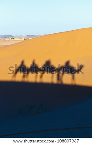 Camels shadows projected over Erg Chebbi orange sand dunes at Morocco