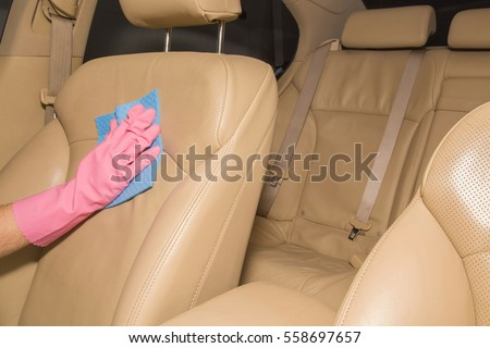 car interior leather seats professionally chemical stock photo 558698044 shutterstock. Black Bedroom Furniture Sets. Home Design Ideas