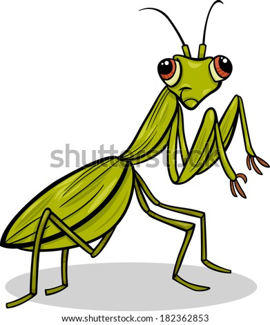 Cartoon illustration of funny mantis insect character stock photo