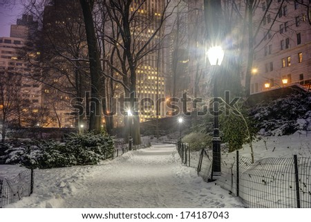 Central Park, New York City at night during snow storm