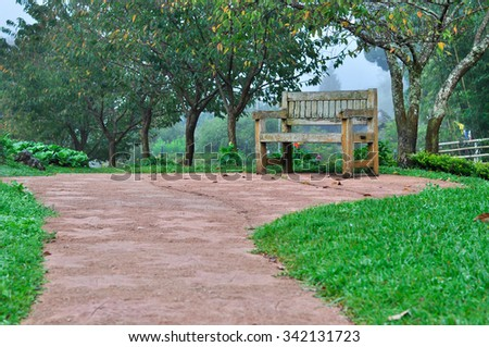 Chair with garden in the morning in Chiangmai, Thailand
