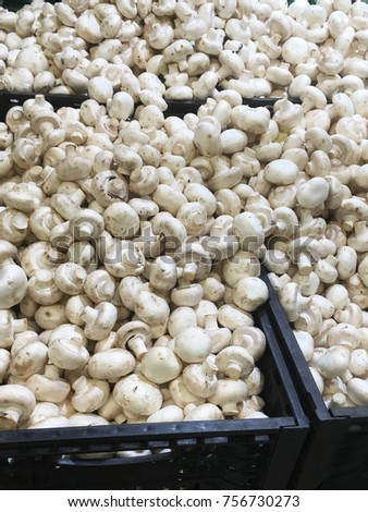 Pentol indonesian special food stock photo 729488134 shutterstock champignons fresh champignons champignons for food textures champignons background altavistaventures Image collections