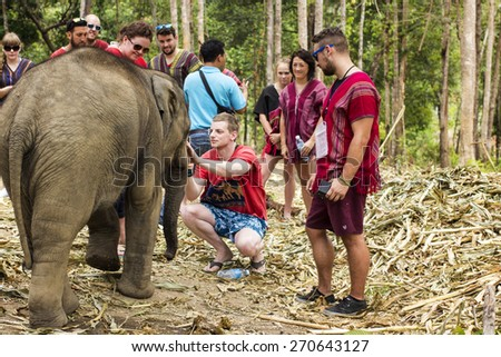 CHIANG MAI, THAILAND - APRIL 14, 2015 : People can experience the lifestyle of elephants in their natural habitat 