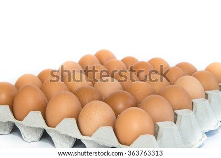 Chicken egg in carton box