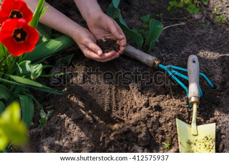 children's hands dug a pit, planting flowers
