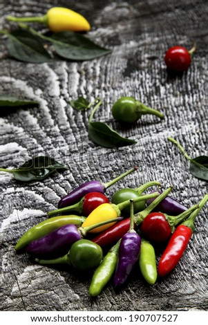 Chili Pepper in different shapes and colors
