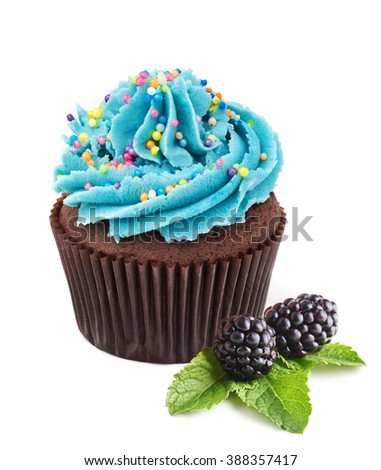 chocolate cupcake with fresh  blackberries isolated on white