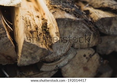 Chopped firewood lying in the barn, they are beautiful sunlight falls