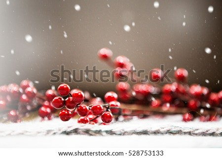 Christmas background, snowing on winter cranberry branch