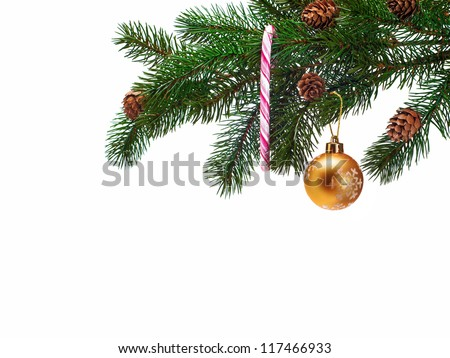 Christmas ball on green spruce branch