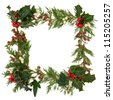 Christmas decorative border of holly,  ivy mistletoe and cedar leaf sprigs with pine cones over white background. - stock photo