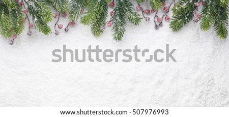 Christmas fir twig with red berries on snow
