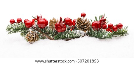 Christmas Red Berries Decoration, Berry Branch Pine Tree Cone Isolated over Winter Snow