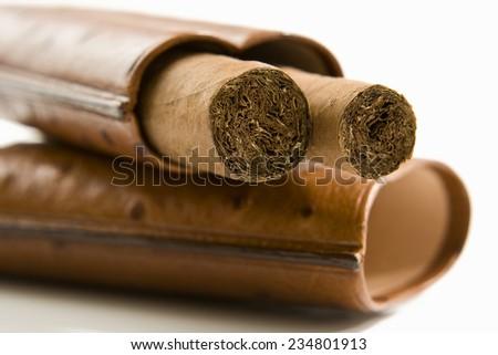 Cigars in case, close-up