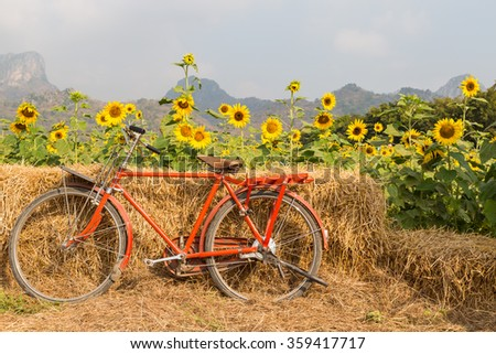 Classic red bicycle with sunflower background